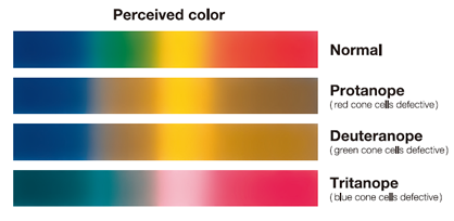 Color Vision Defects Achromatopsia Color Blindness